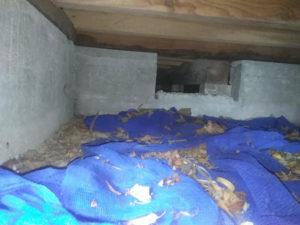 床下空気孔